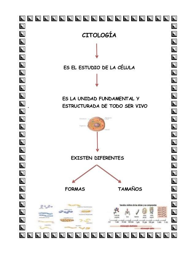 CITOLOGÍA  ES EL ESTUDIO DE LA CÉLULA  ES LA UNIDAD FUNDAMENTAL Y .  ESTRUCTURADA DE TODO SER VIVO  EXISTEN DIFERENTES  FO...