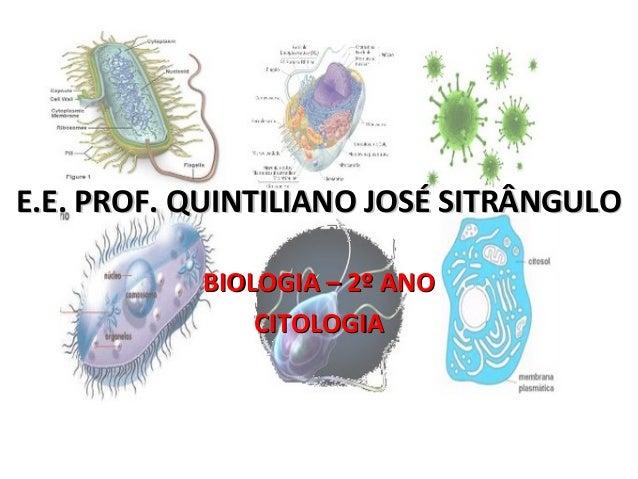 E.E. PROF. QUINTILIANO JOSÉ SITRÂNGULOE.E. PROF. QUINTILIANO JOSÉ SITRÂNGULO BIOLOGIA – 2º ANOBIOLOGIA – 2º ANO CITOLOGIAC...