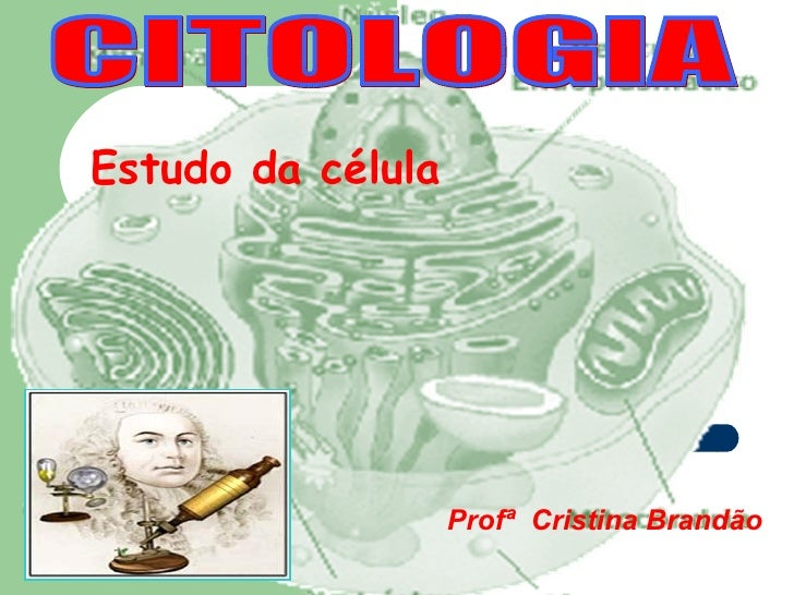 Estudo da célula                   Profª Cristina Brandão