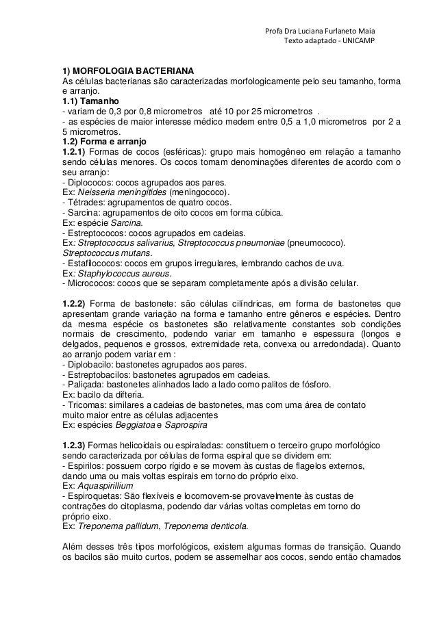 Profa Dra Luciana Furlaneto Maia Texto adaptado - UNICAMP 1) MORFOLOGIA BACTERIANA As células bacterianas são caracterizad...
