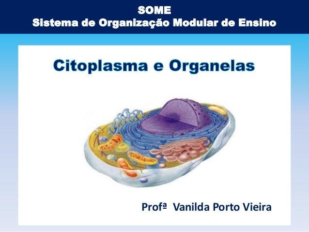 SOME Sistema de Organização Modular de Ensino  Profª Vanilda Porto Vieira