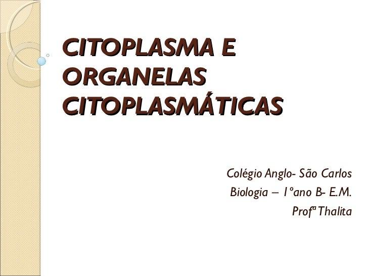 CITOPLASMA EORGANELASCITOPLASMÁTICAS           Colégio Anglo- São Carlos            Biologia – 1ºano B- E.M.              ...
