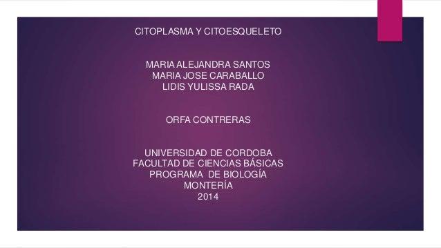 CITOPLASMA Y CITOESQUELETO MARIA ALEJANDRA SANTOS MARIA JOSE CARABALLO LIDIS YULISSA RADA ORFA CONTRERAS UNIVERSIDAD DE CO...