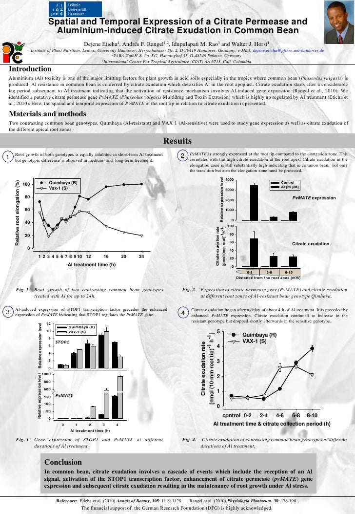 Spatial and Temporal Expression of a Citrate Permease and                                                                 ...