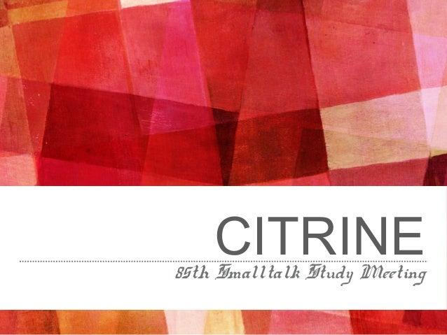 CITRINE85th Smalltalk Study Meeting