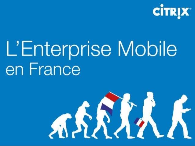 L'Entreprise Mobile en France