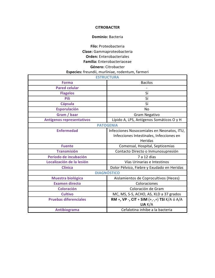 CITROBACTER                              Dominio: Bacteria                              Filo: Proteobacteria              ...