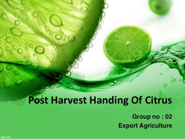 Post Harvest Handing Of Citrus  Group no : 02  Export Agriculture