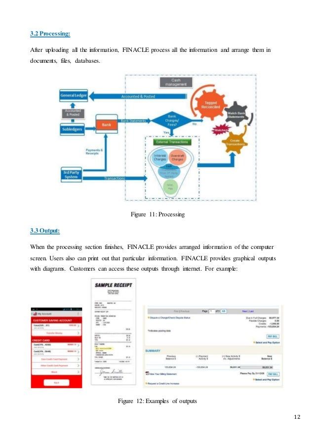 City bank - (FINACLE) Information System Report