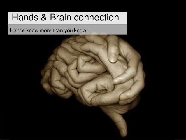 Hands & brain evolved simultaneously The evolution of the connection