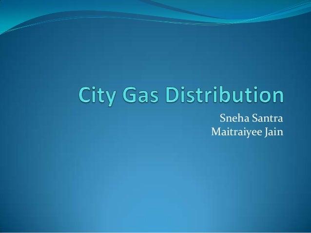 City Gas Distribution Dolat Report Essay