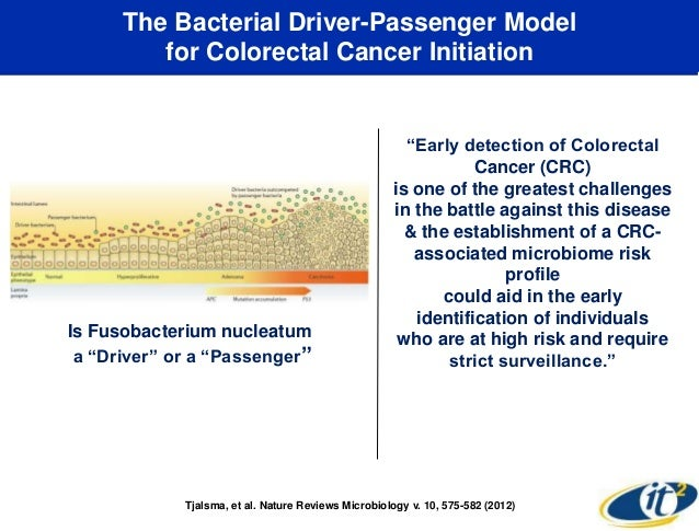 Personalized Medicine Colorectal Cancer And Gut Bacteria