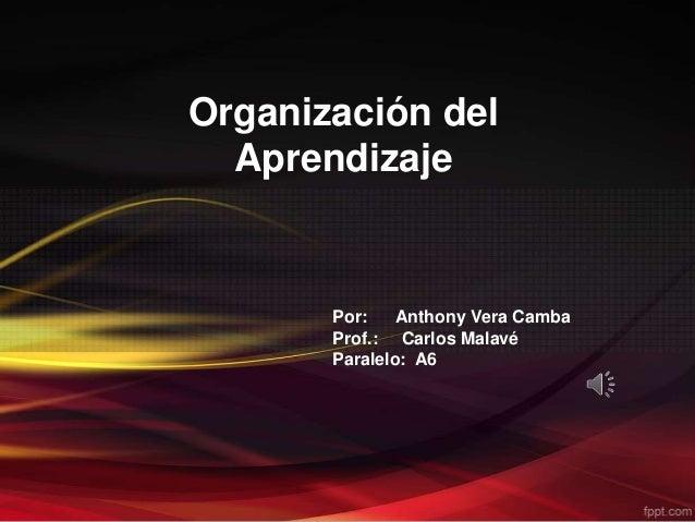 Organización delAprendizajePor: Anthony Vera CambaProf.: Carlos MalavéParalelo: A6