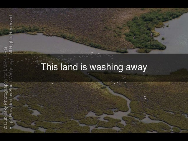 louisiana wet land loss Facts behind our case  of this land will be closer to populated areas and its loss will put people and property in  the mississippi to create the louisiana wetlands.