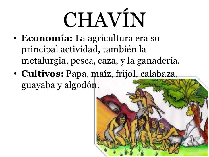 CHAVÍN• Economía: La agricultura era su  principal actividad, también la  metalurgia, pesca, caza, y la ganadería.• Cultiv...