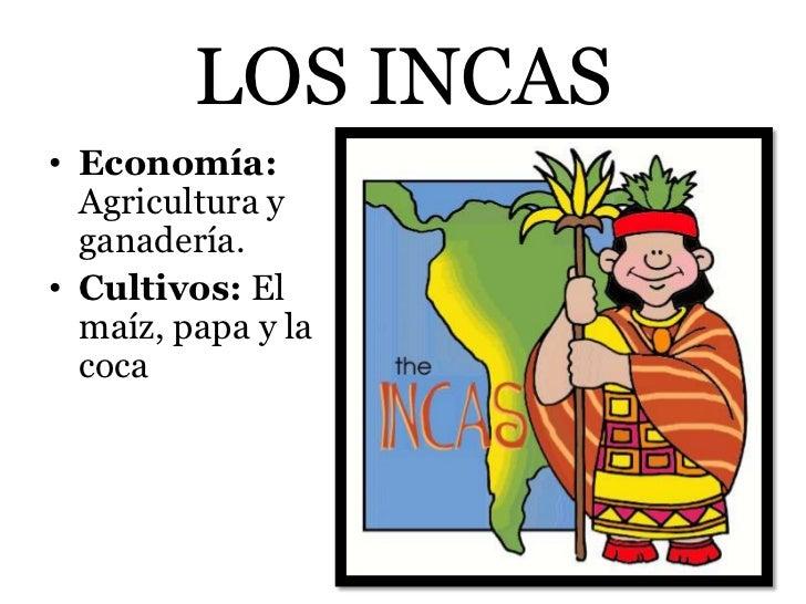 LOS INCAS• Economía:  Agricultura y  ganadería.• Cultivos: El  maíz, papa y la  coca
