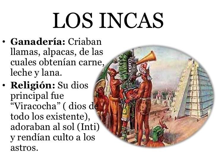 LOS INCAS• Ganadería: Criaban  llamas, alpacas, de las  cuales obtenían carne,  leche y lana.• Religión: Su dios  principa...