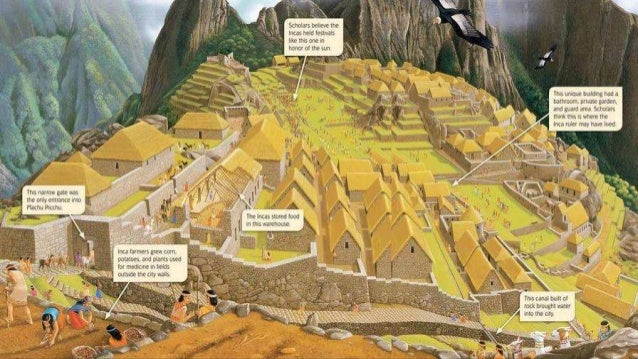 Civilizations of early Central and South America