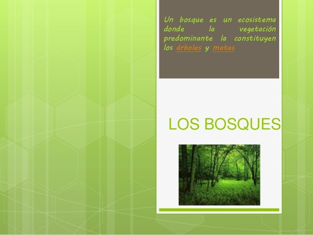LOS BOSQUES Un bosque es un ecosistema donde la vegetación predominante la constituyen los árboles y matas
