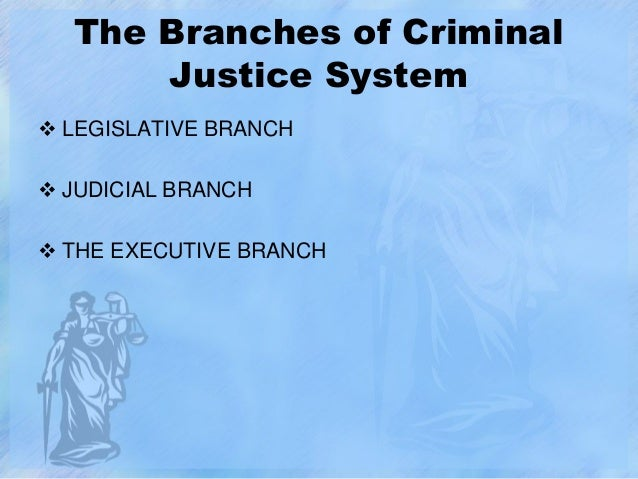 the criminal justice system component agencies The authors focus on selected components of the criminal justice system and the utility of performance performance measures for the criminal justice system vii criminal justice agencies have.