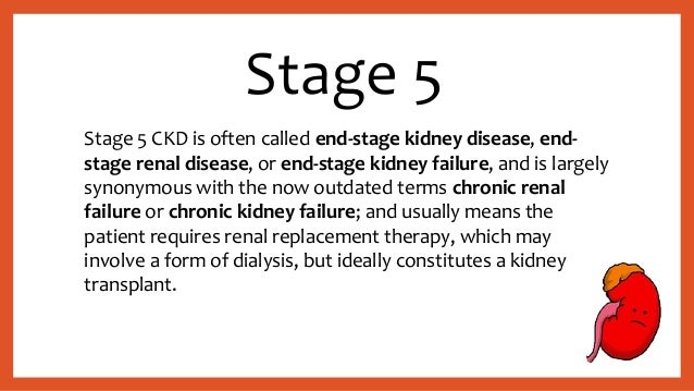 Chronic Renal Disease (CKD)