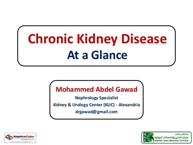 Chronic Kidney Disease At a Glance Mohammed Abdel Gawad Nephrology Specialist Kidney & Urology Center (KUC) - Alexandria d...