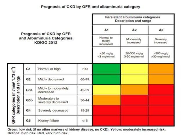 Chronic Kidney Disease In Primary Care