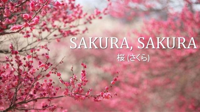 Sakura Sakura Cherry Blossoms Japanese Folk Song For Grade 8 Ma