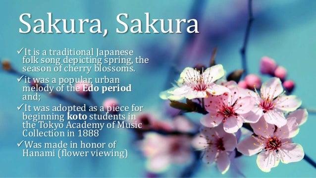 Sakura Cherry Blossom Lyrics