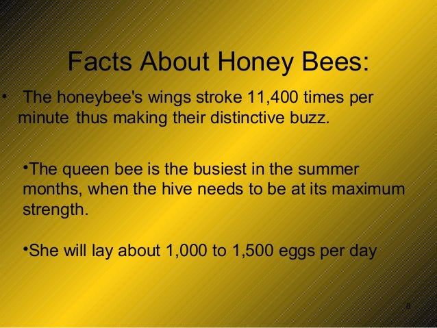 Cl iv-honey-bee-ppt