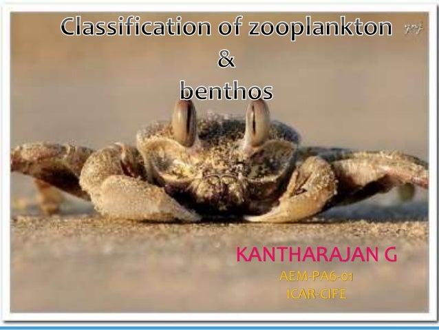 By G.Kantharajan AEM-PA6-01 KANTHARAJAN G AEM-PA6-01 ICAR-CIFE