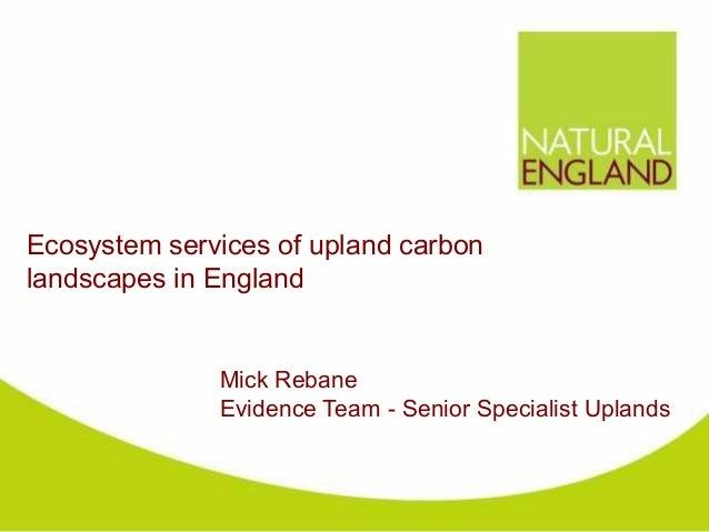 Ecosystem services of upland carbonlandscapes in England              Mick Rebane              Evidence Team - Senior Spec...