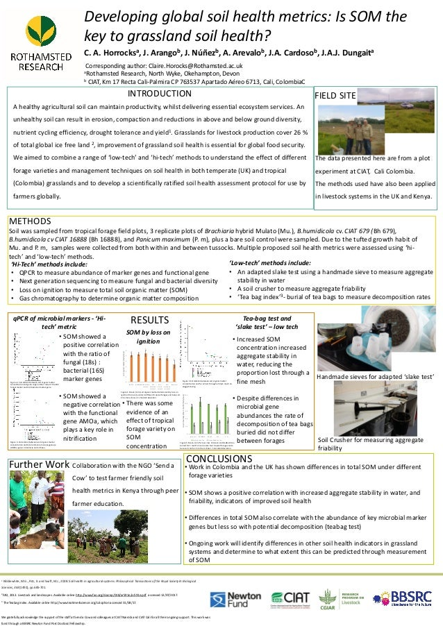 Developing global soil health metrics: Is SOM the key to grassland soil health? C. A. Horrocksa, J. Arangob, J. Núñezb, A....