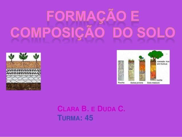 CLARA B. E DUDA C.TURMA: 45