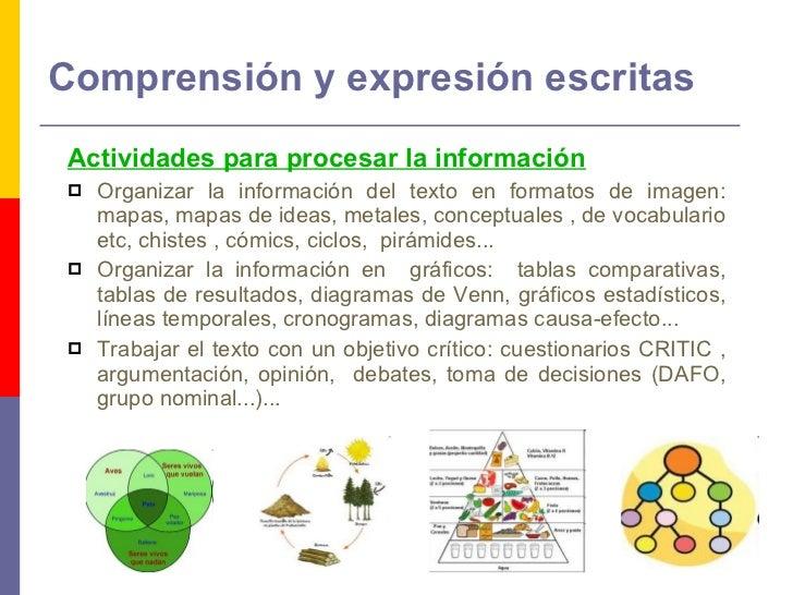 Comprensión y expresión escritas <ul><li>Actividades para procesar la información   </li></ul><ul><li>Organizar la informa...