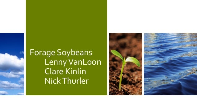 Forage Soybeans LennyVanLoon Clare Kinlin NickThurler