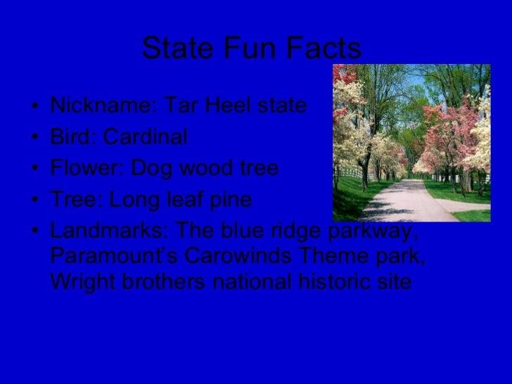 State Fun Facts  <ul><li>Nickname: Tar Heel state  </li></ul><ul><li>Bird: Cardinal </li></ul><ul><li>Flower: Dog wood tre...