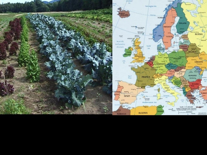 One reason many European countries colonized other landsand people is because many European countires wererunning out of n...