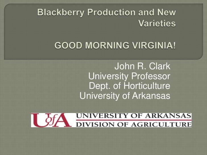 Blackberry Production and New VarietiesGOOD MORNING VIRGINIA!<br />John R. Clark<br />University Professor<br />Dept. of H...