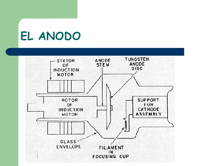 EL ANODO
