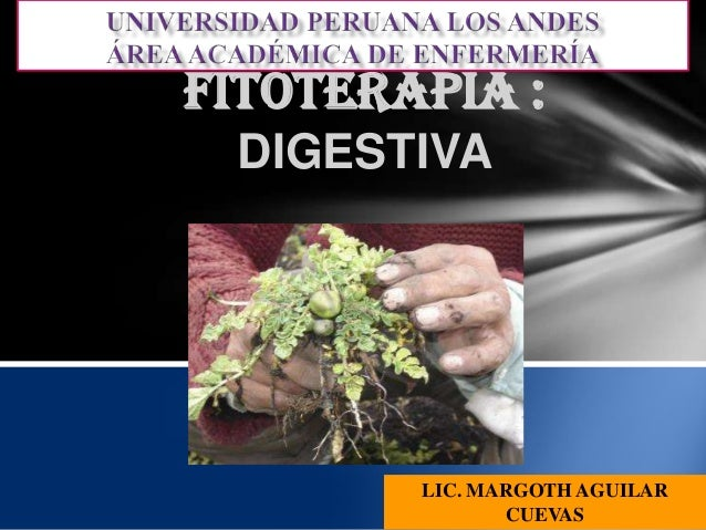 FITOTERAPIA : DIGESTIVA  LIC. MARGOTH AGUILAR CUEVAS