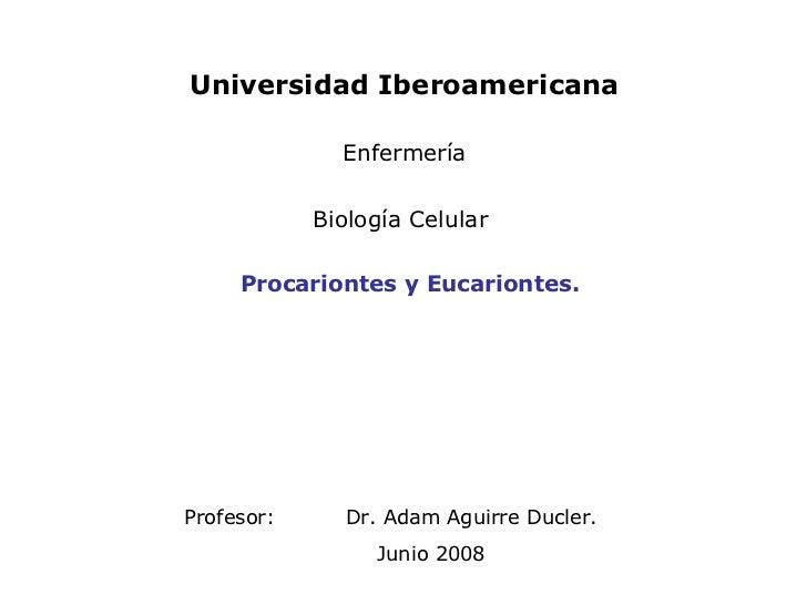 Profesor: Dr. Adam Aguirre Ducler. Junio 2008 Procariontes y Eucariontes. Universidad Iberoamericana Enfermería Biología C...