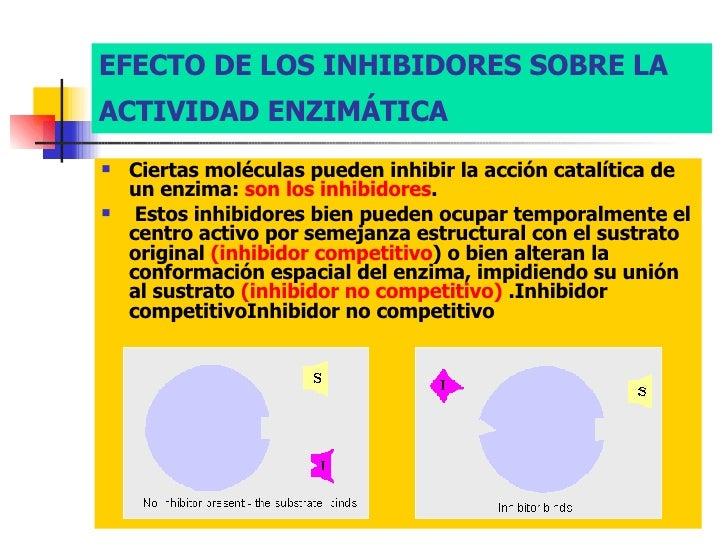 Efecto inhibidor - inhibidores de las enzimas