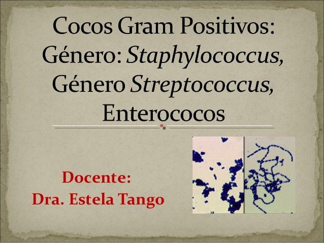 Docente:Dra. Estela Tango