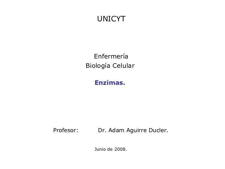 UNICYT Enfermería Biología Celular  Profesor: Dr. Adam Aguirre Ducler.   Junio de 2008. Enzimas.