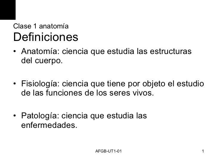 Clase 1 anatomía Definiciones <ul><li>Anatomía: ciencia que estudia las estructuras del cuerpo. </li></ul><ul><li>Fisiolog...