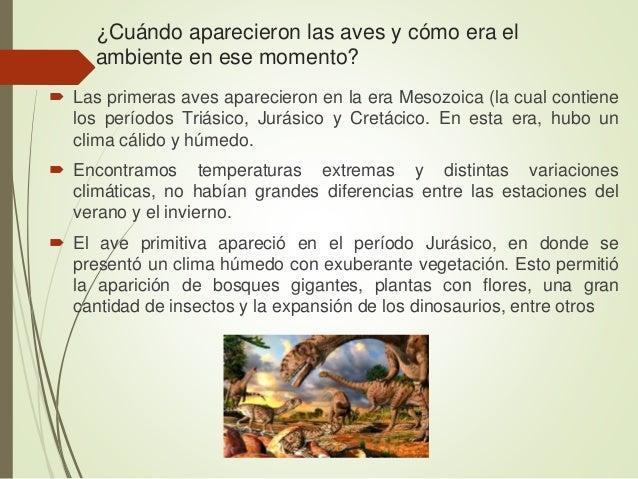  Las aves descienden del grupo de dinosaurios llamados saurisquios (pelvis de lagarto).  La relación entre aves y dinosa...