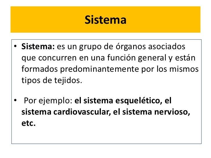 Anatomia Sistemas o aparatos ¿?