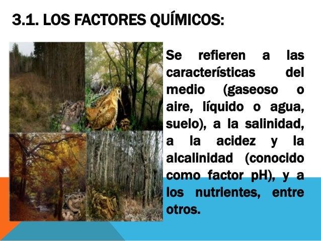 clase 02 factores ambientales