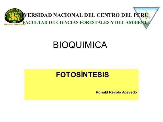 BIOQUIMICA FOTOSÍNTESIS Ronald Révolo Acevedo UNIVERSIDAD NACIONAL DEL CENTRO DEL PERU FACULTAD DE CIENCIAS FORESTALES Y D...